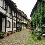 Clubvakantie Zwarte Woud – 05-12/07/2014