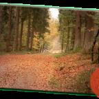 Busuitstap Montenau – 27/10/2018